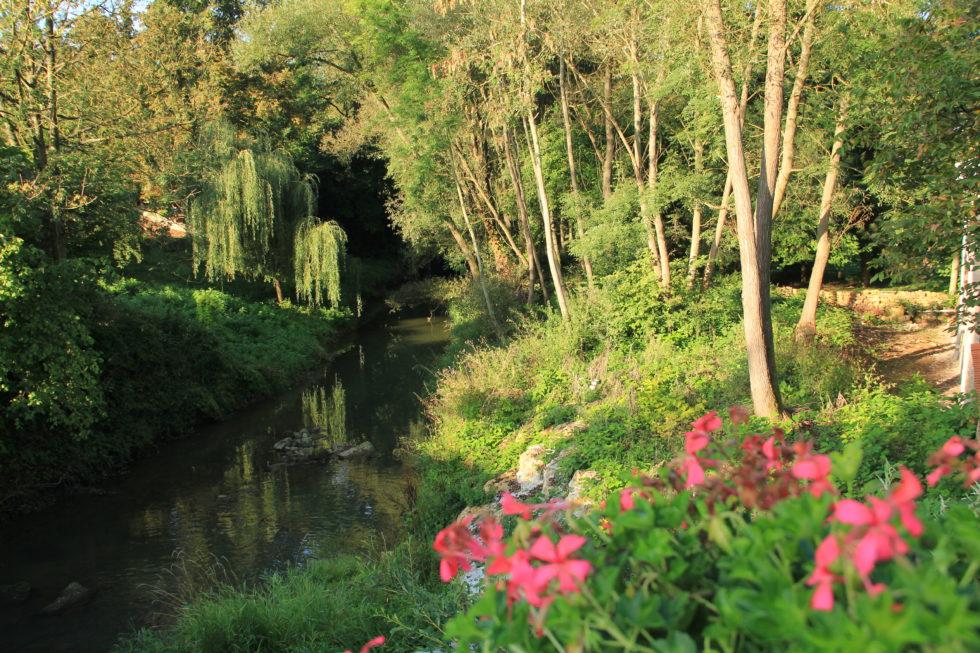 En juillet et en août – Curieux de nature, sur le Bassin de Pompey