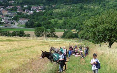 A partir du 27 juin – Le plateau de Malzéville s'anime